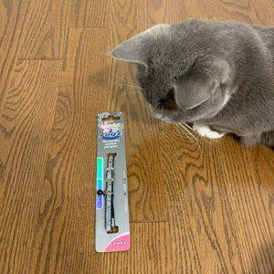 🌸 2/$20 Cute Cat Collar
